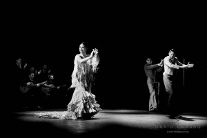 190705 1201 Ballet-Flamenco-de-Andalusia WEB