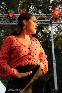 Les Nuits Flamencas 2016 03