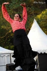 Les Nuits Flamencas 2016 04