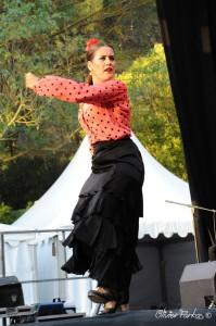 Les Nuits Flamencas 2016 05