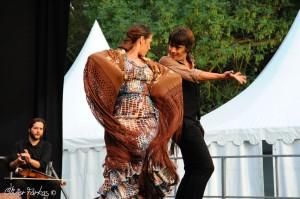 Les Nuits Flamencas 2016 07