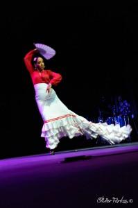 Les Nuits Flamencas 2016 13