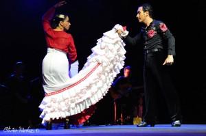 Les Nuits Flamencas 2016 14