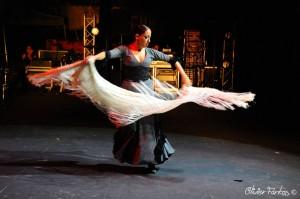 Les Nuits Flamencas 2016 16