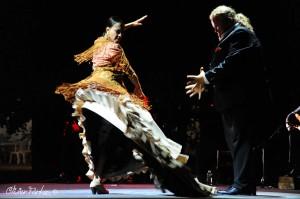 Les Nuits Flamencas 2016 17