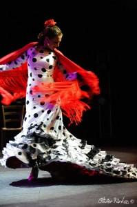 Les Nuits Flamencas 2016 19