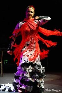 Les Nuits Flamencas 2016 20