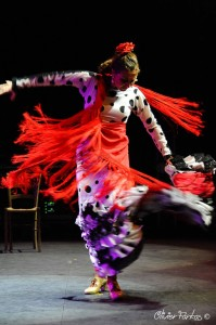 Les Nuits Flamencas 2016 21